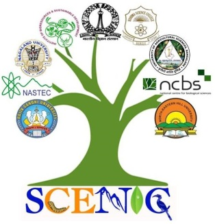 scenic logo_9p